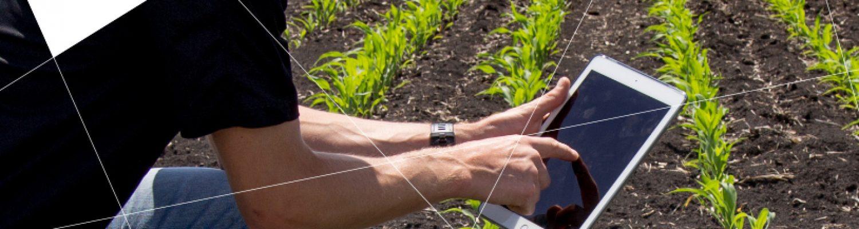 axe_strategique_agriculture_numérique